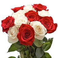 11 red and white roses - flowers and bouquets on roza.od.ua