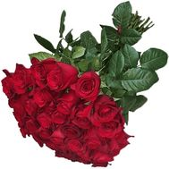 31 red imported rose - flowers and bouquets on roza.od.ua