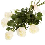 5 white roses - flowers and bouquets on roza.od.ua