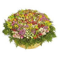 """1001 tulip"" in the online flower shop roza.od.ua"