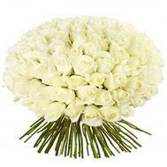 Bouquet of 101 white roses - flowers and bouquets on roza.od.ua