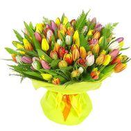 101 разноцветный тюльпан - цветы и букеты на roza.od.ua