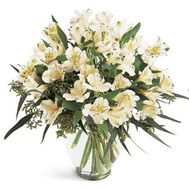 11 white alstromeries - flowers and bouquets on roza.od.ua