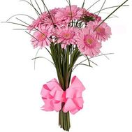 11 pink gerberas - flowers and bouquets on roza.od.ua