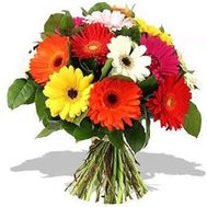 15 gerberas - flowers and bouquets on roza.od.ua