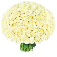 Bouquet of 201 white roses - flowers and bouquets on roza.od.ua