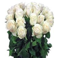 21 imported white rose - flowers and bouquets on roza.od.ua