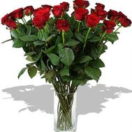 21 imported red rose - flowers and bouquets on roza.od.ua
