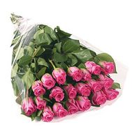 21 imported pink roses - flowers and bouquets on roza.od.ua