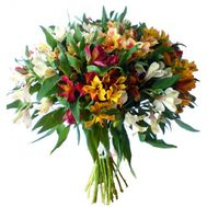 25 multi-colored alstromeries - flowers and bouquets on roza.od.ua