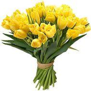 25 желтых тюльпанов - цветы и букеты на roza.od.ua