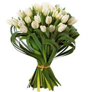 29 white tulips - flowers and bouquets on roza.od.ua