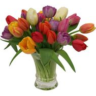 29 multi-colored tulips - flowers and bouquets on roza.od.ua