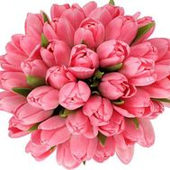 45 pink tulips - flowers and bouquets on roza.od.ua