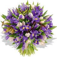 51 tulips and irises - flowers and bouquets on roza.od.ua