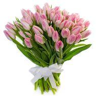 65 розовых тюльпанов - цветы и букеты на roza.od.ua