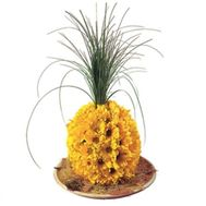 Pineapple of flowers - flowers and bouquets on roza.od.ua