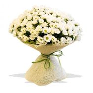Bouquet of 35 chrysanthemums - flowers and bouquets on roza.od.ua