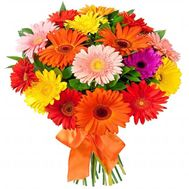 17 multi-colored gerberas - flowers and bouquets on roza.od.ua