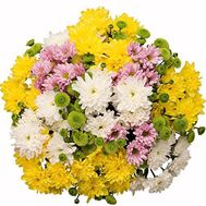 """Bouquet of 17 chrysanthemums"" in the online flower shop roza.od.ua"