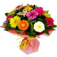 21 colored gerberas - flowers and bouquets on roza.od.ua