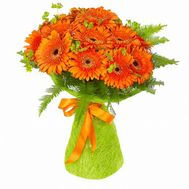 25 orange gerberas - flowers and bouquets on roza.od.ua