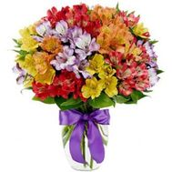 Bouquet of 35 alstromeries - flowers and bouquets on roza.od.ua