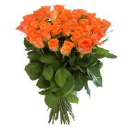 Orange roses in Odessa:35 pieces. - flowers and bouquets on roza.od.ua