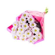 Bouquet of chrysanthemum chamomile - flowers and bouquets on roza.od.ua