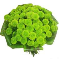 """Bouquet of flowers of 13 chrysanthemums"" in the online flower shop roza.od.ua"