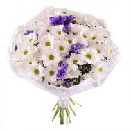 13 хризантем - цветы и букеты на roza.od.ua