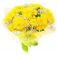 13 chrysanthemums - flowers and bouquets on roza.od.ua