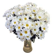 Bouquet of chamomiles - flowers and bouquets on roza.od.ua