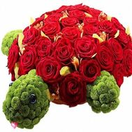 """Turtle Bug"" in the online flower shop roza.od.ua"