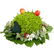 Hedgehog of flowers - flowers and bouquets on roza.od.ua