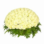 101 white rose - flowers and bouquets on roza.od.ua