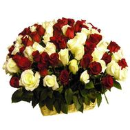 101 multi-colored rose - flowers and bouquets on roza.od.ua