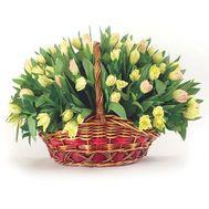 Basket of 85 tulips - flowers and bouquets on roza.od.ua