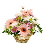 Basket of flowers from gerberas and chrysanthemums - flowers and bouquets on roza.od.ua