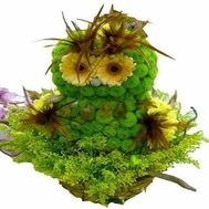 Owl of flowers - flowers and bouquets on roza.od.ua