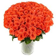 101 orange rose cm - flowers and bouquets on roza.od.ua