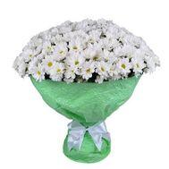 51 Chamomile Chrysanthemum - flowers and bouquets on roza.od.ua