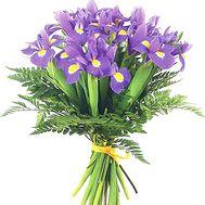 21 blue iris - flowers and bouquets on roza.od.ua