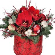 Christmas composition with amaryllis - flowers and bouquets on roza.od.ua