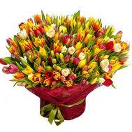 301 тюльпан - цветы и букеты на roza.od.ua