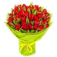45 красных тюльпанов - цветы и букеты на roza.od.ua