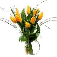 9 желтых тюльпанов - цветы и букеты на roza.od.ua