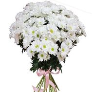 """Bouquet of 17 chamomiles"" in the online flower shop roza.od.ua"