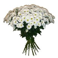 """Bouquet of 19 chamomiles"" in the online flower shop roza.od.ua"