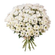 """Bouquet of 21 chamomiles"" in the online flower shop roza.od.ua"